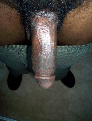 12 inch black dicks